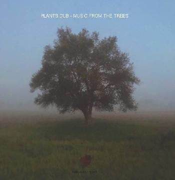 Music from the trees